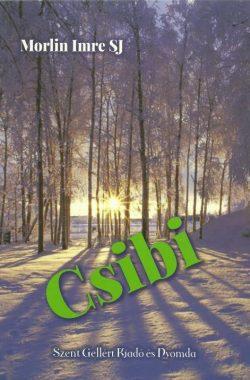 csibi